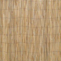 Greenfingers Split Giant Reed Screening 2 x 4m