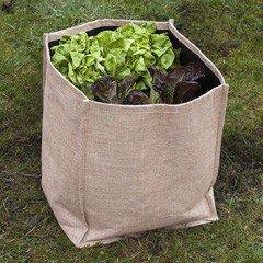 Greenfingers Salad & Vegetable Planter - Large
