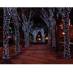 Festive 300 White Extendable LED Lights