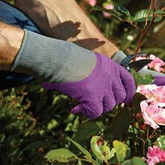 Briers All Seasons Gardener Gloves Purple  - Medium