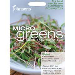 Johnsons MicroGreens - Chard
