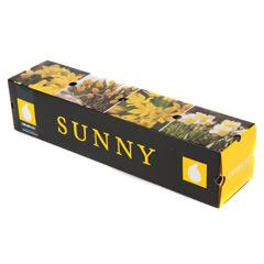 Javado Colorize - Sunny Yellow 26 Bulbs