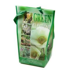 Javado Elegant Green - 75 bulbs