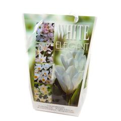 Javado Elegant White - 75 bulbs
