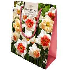 Taylors Colourful Daffodil Mix - Gift Bag of 15 Bulbs