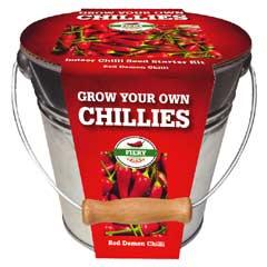 Taylors Chilli Metal Bucket Planter - Chilli Red Demon Seeds