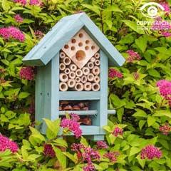 Wildlife World Bee & Bug Biome